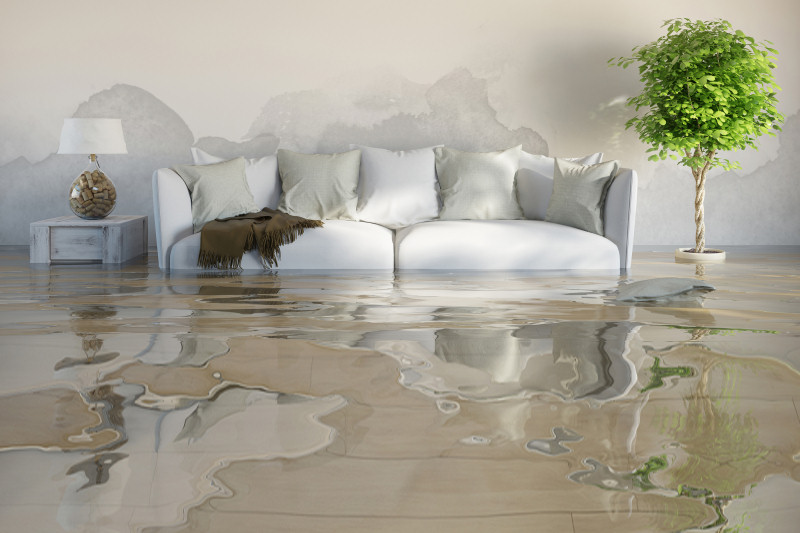 When water infiltrates your home and causes damage, it is essential to address the problem immediately, or else!